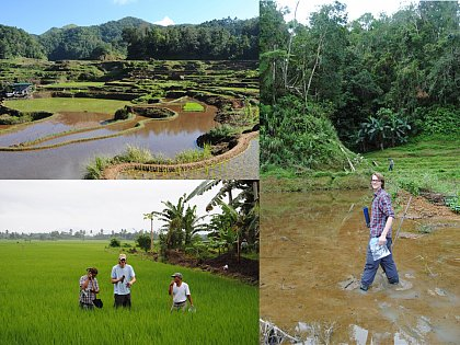 Sampling of paddy soils in the Philippines